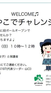 OyakoIcon_sample2