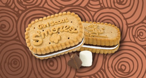 Image result for girl scout Girl Scout S'mores