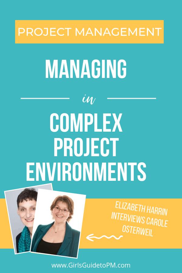 Gestión de proyectos en entornos complejos