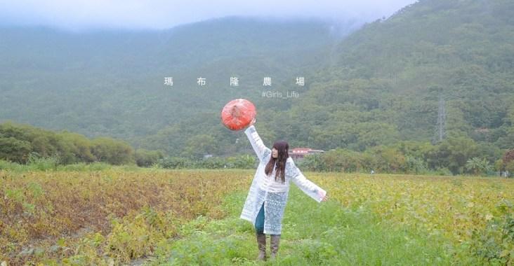 【2020國產雜糧十大經典體驗路線】花蓮瑪布隆農場:在地特色黑豆茶DIY、農事體驗 /光豐地區農會 @女子的休假計劃