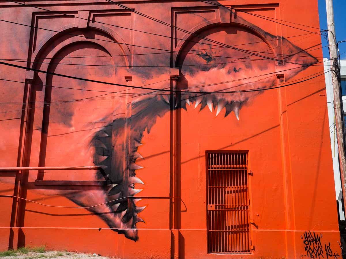 St Pete Land Shark Street Art