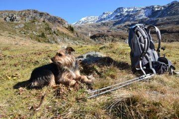 hiking-1129499_1920