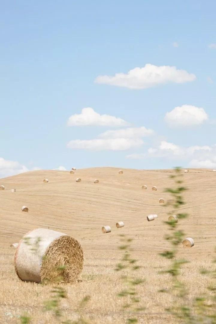 Roadtrip estival en Toscane Italie