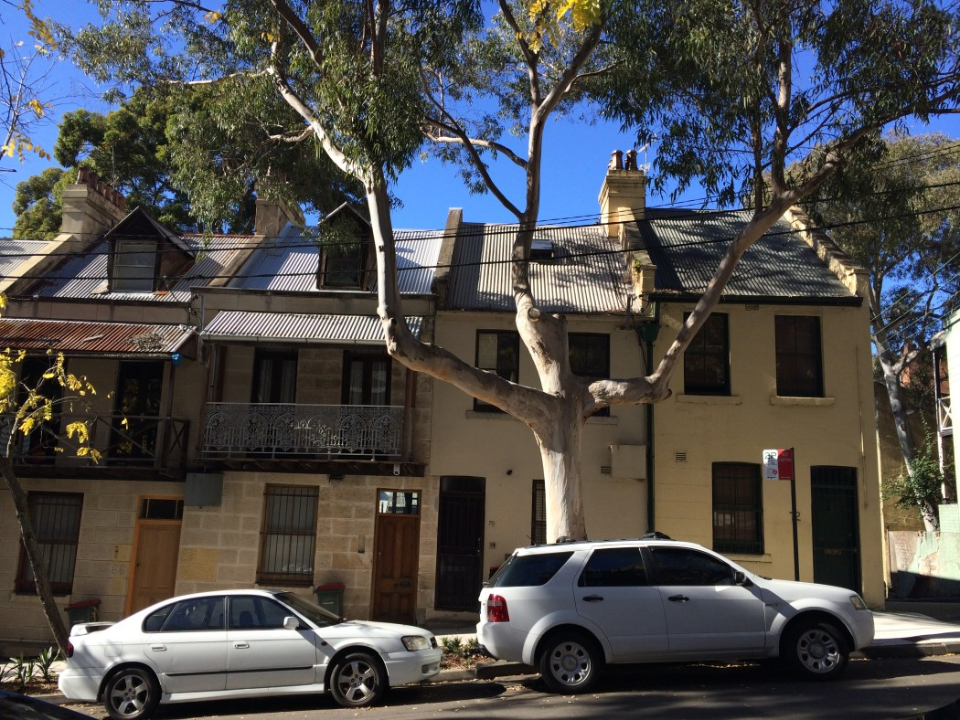 Love the terrace houses in Sydney