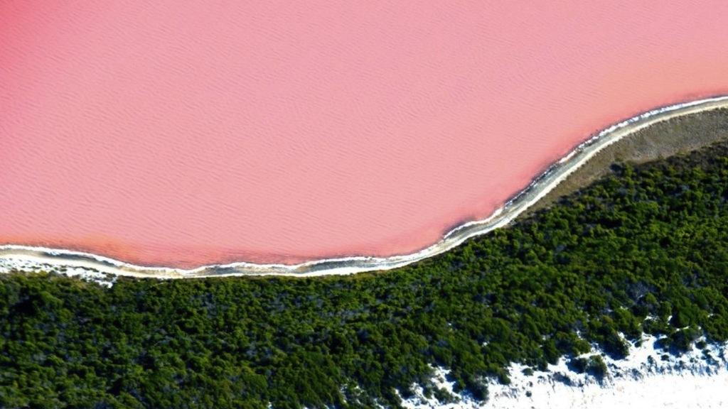 Lake Hillier, Middle Island, Esperance, WA. Image by australia.com
