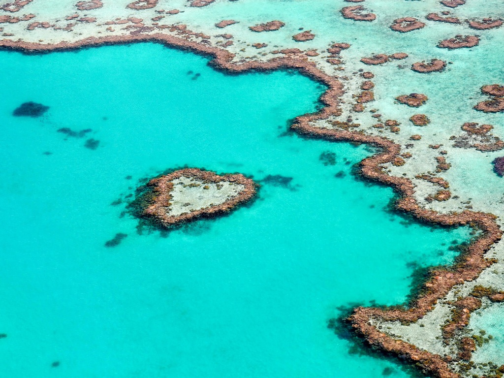 The Best Experiences At The Great Barrier Reef