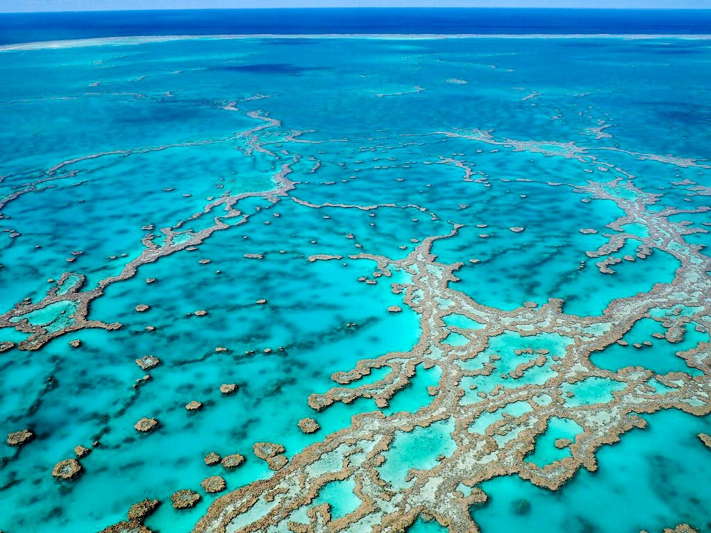Staggering sight - The Great Barrier Reef from above