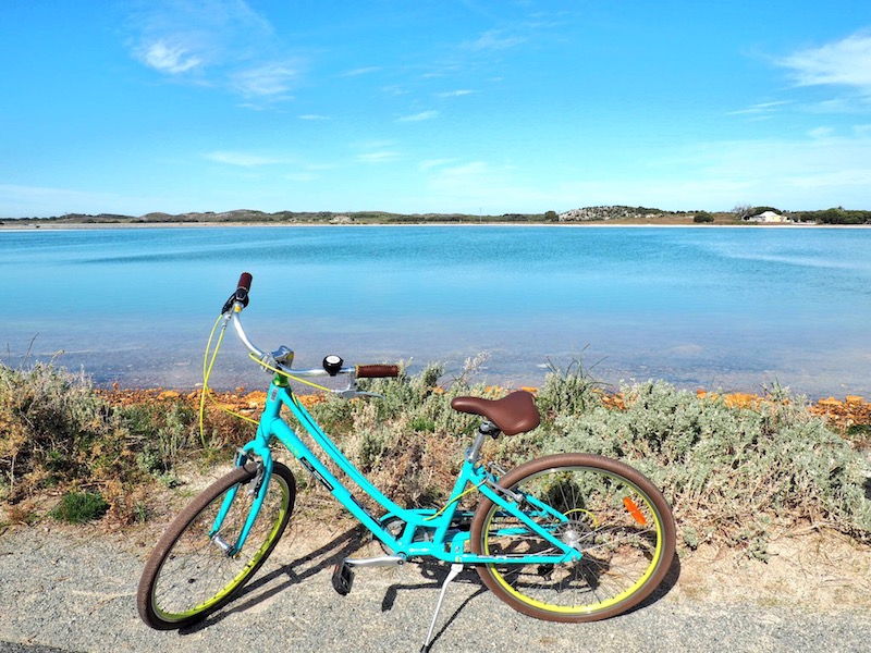 Riding Rotto – Daytrip to Rottnest Island, Western Australia
