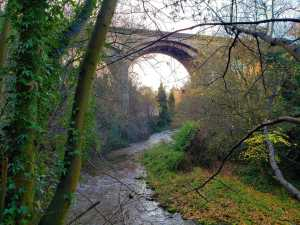 The natural beauty of the Water of Leith Walkway is truly awe-inspiring.