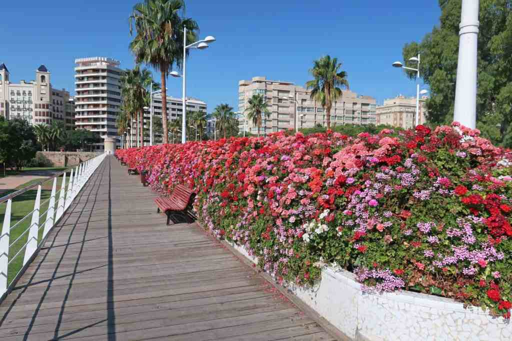 The floral beauty fo Valencia throughout the Spring.