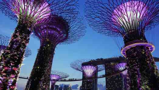 No tips leave more money to see some of Singapore's top attractions, like the Gardens by the Bay!