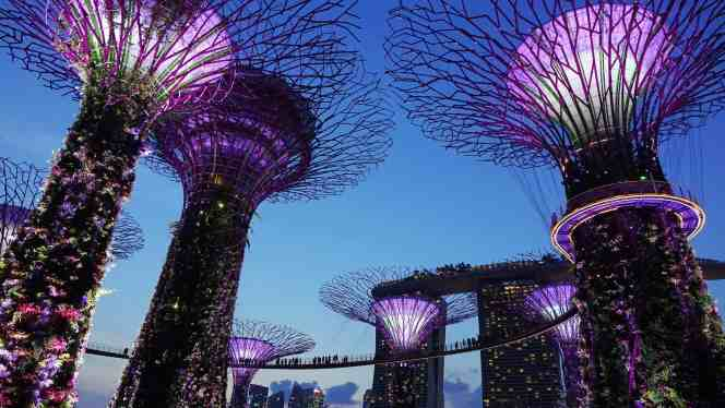The vibrant, purple hues of Singapore's Garden by the Bay at night time.