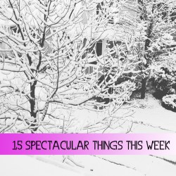 15 Spectacular Things This Week
