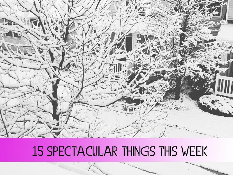 15 Spectacular Things This Week