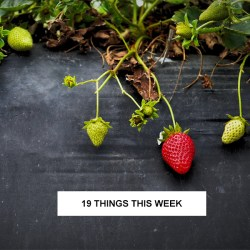 19 things this week
