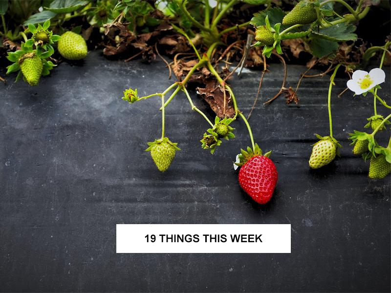 19 things this week