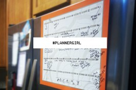 PlannerGirl Paper vs Digital