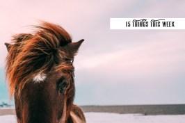 15 things this week