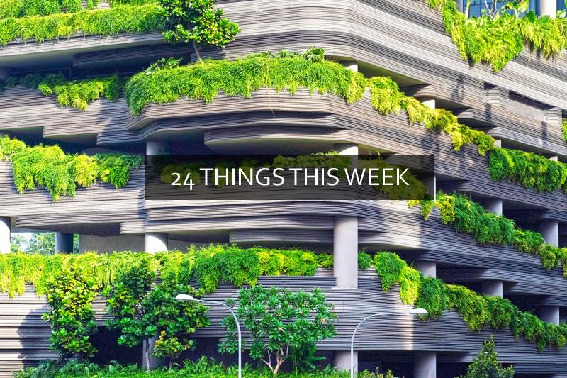 24 Weekly Links