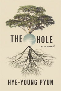 The Hole (Novel)