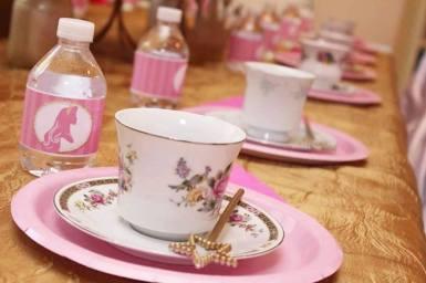 Jacksonville Aurora Sleeping Beauty Tea Party Birthday