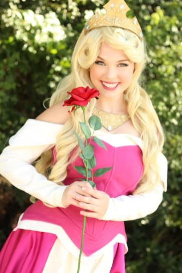 Sleeping Beauty Aurora Inspired Princess Party