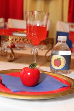 Snow White Princess Party Planner