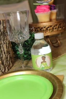 Tiana Inspired Frog Princess Party St Augustine