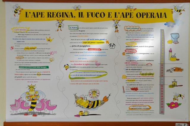 Museo-del-Miele-Lavarone-pannelli-per-bambini