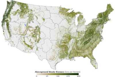 Aboveground Woody Biomass Map by Josef Kellndorfer and Wayne Walker.