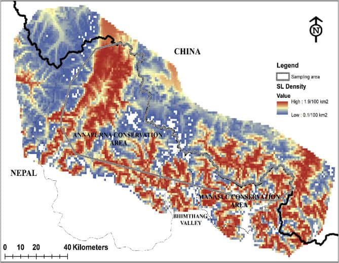 Map showing predicted snow leopards density in the landscape based on the top model as a quadratic function of elevation. Map: Chetri et al., 2019