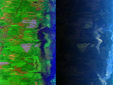 normal view (left) and polarized view (right) of farmland near the Chesapeake Bay