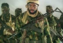 Boko Haram: Shakau Kills Own Commander, Appoints New One