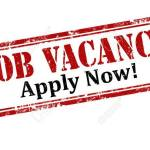 Officer Vacancy at Equisite Nig