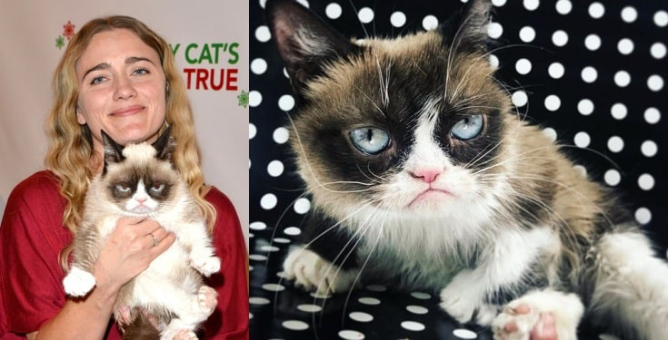 Grumpy Cat, the richest cat in the world with $100 million fortune is dead