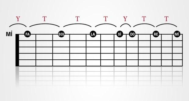 Gitarda Notaların Yerleri