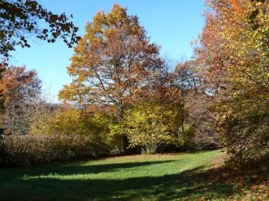 Paysage d'automne à la Colombière