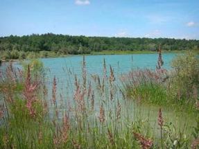 Lac-de-Montbel_3