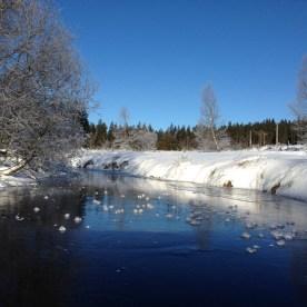 fagnes neige hiver(5)
