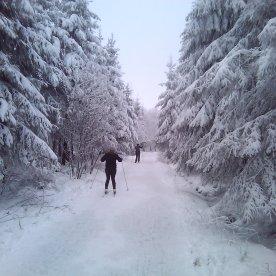ski-fond-hautes-fagnes-00004