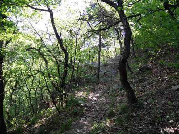 tratto dell'escursione nell'Orrido di Foresto con clima umido