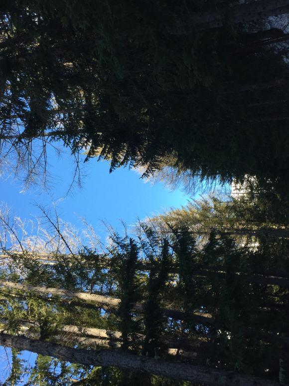 sentiero Decauville bardonecchia