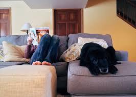 En person læser sidder med optrukne ben og læser avis, mens hunden ligger ved siden af