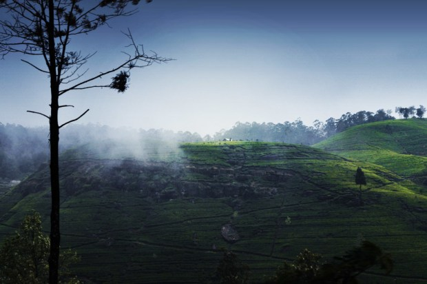 srilankaedit