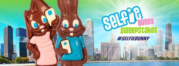 Selfie Bunny Sweepstakes - Chance To win Sweep Trip