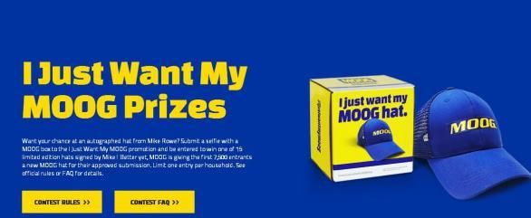 I Just Want My Moog Sweepstakes