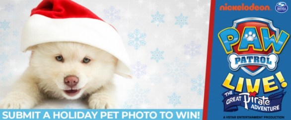 Kosi 101.1 Cute Holiday Pet Photo Contest