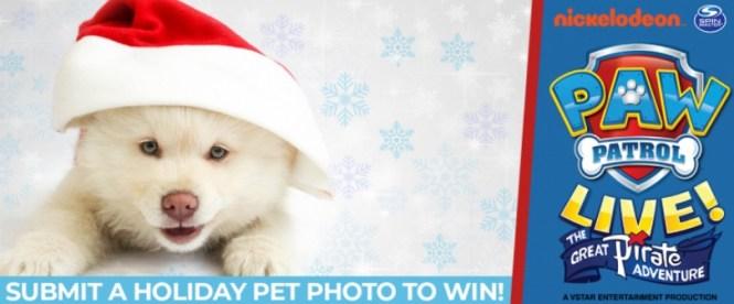 Kosi 101.1 Cute Holiday Pet Photo Contest