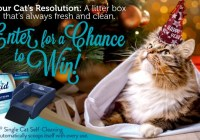 LitterMaid New Year Litter Box Sweepstakes