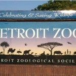 Oakland County Moms Free Detroit Zoo Tickets Contest